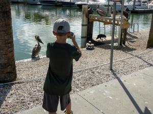 Ethan, pelican, etc (1 of 1)