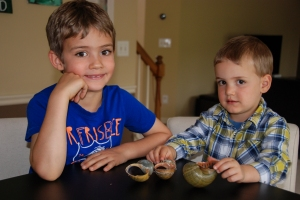 Ethan, Micah, snail shells (1 of 1)