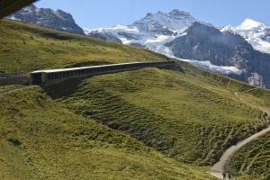 Enroute to Jungfraujoch-4 copy